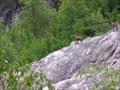 上グリンデルワルト氷河からシュテーレック小屋